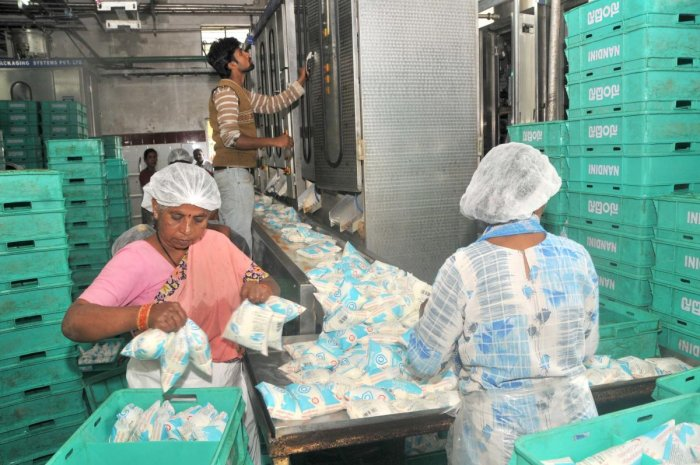 Farmers resort to dairy farming, milk production soars